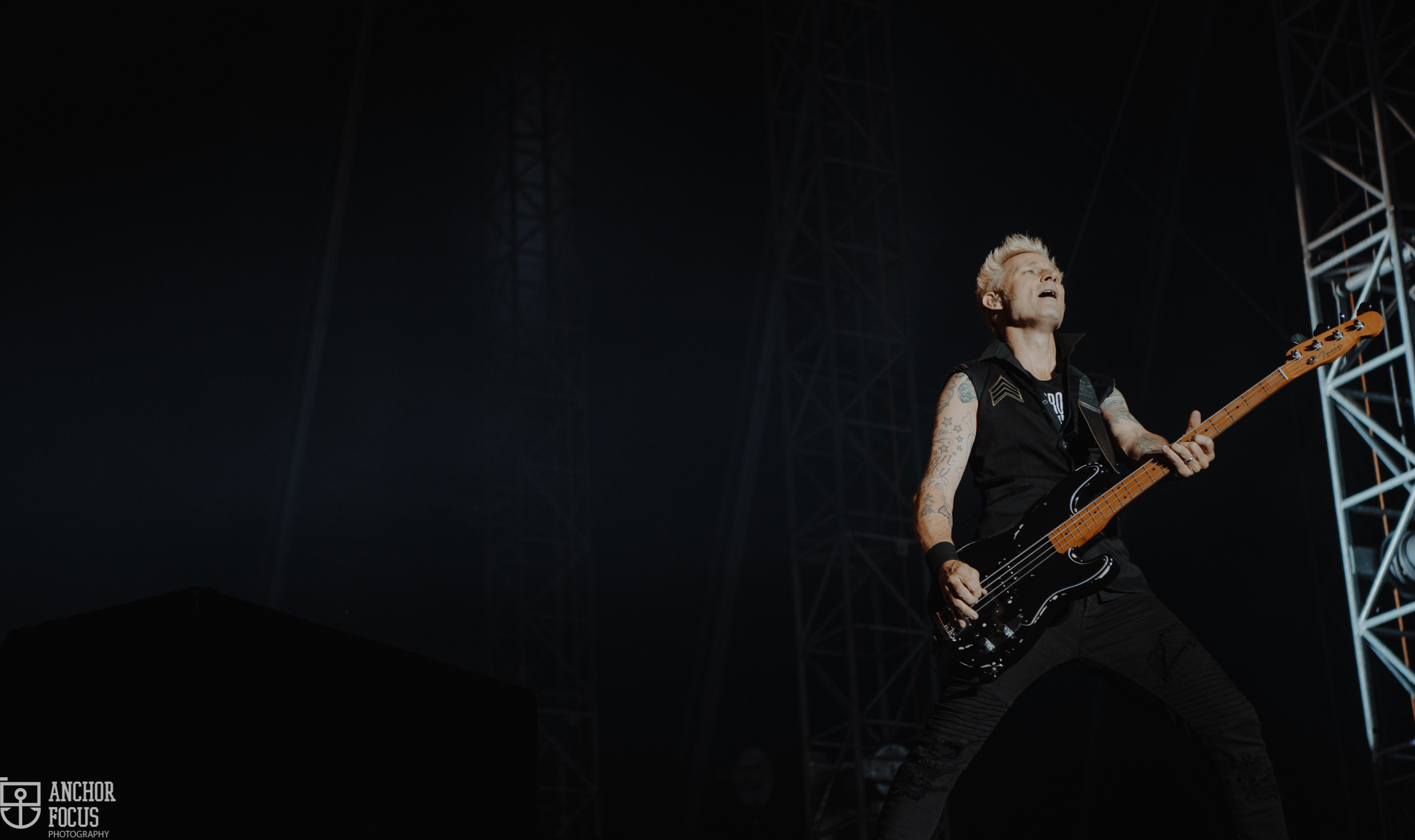 Green Day's Mike Dirnt, live at Nova Rock. (c) Natasja de Vries