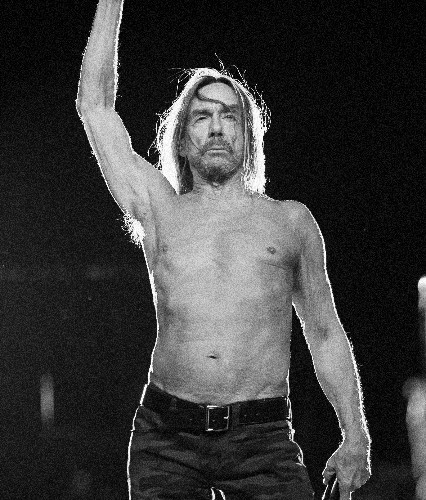 Iggy Pop by Ross Halfin