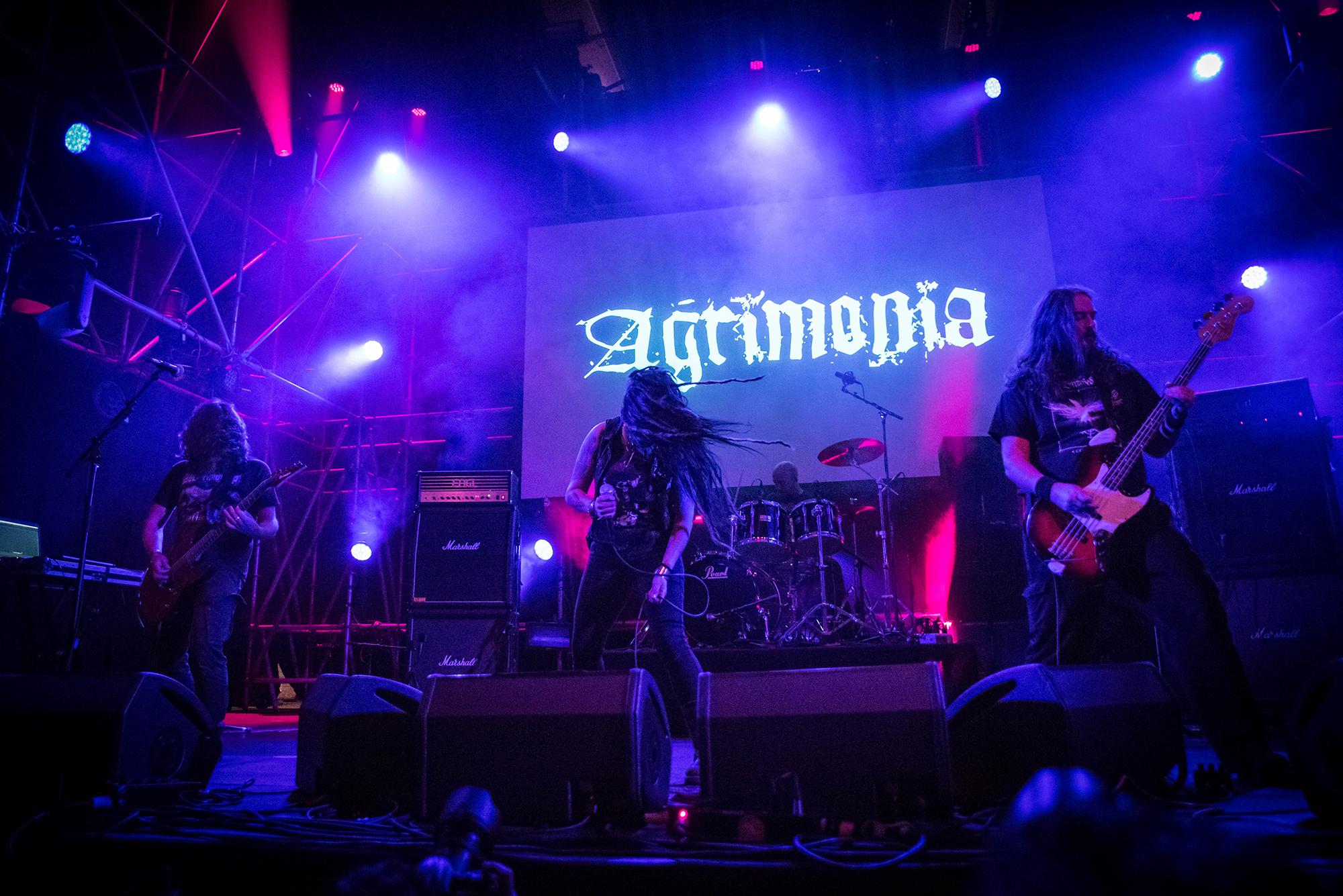 agrimonia1