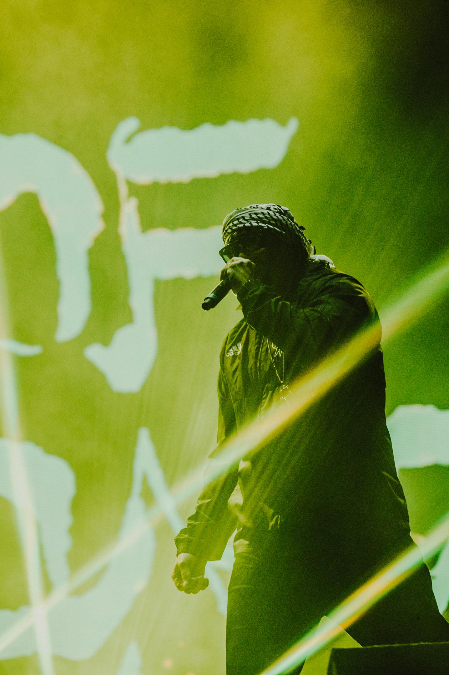 20190711_2300_Cypress Hill(3) (1)